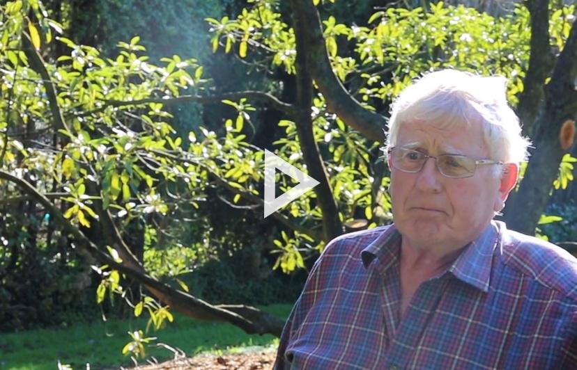 Video_Blog_Alistair_Harvey.jpg