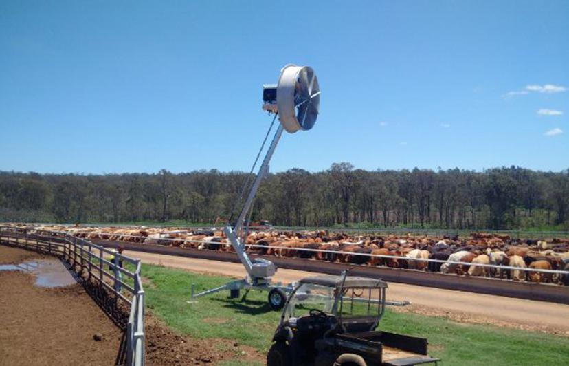 Livestock Cooling