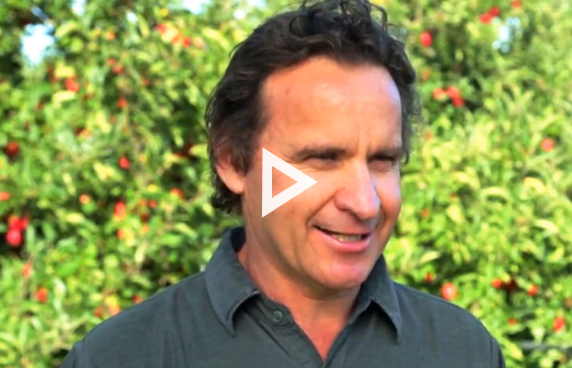 Bostock leads in organic orchard growing!